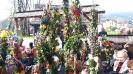 Niedziela Palmowa katarzyna