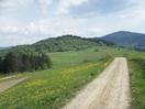 Droga do Żabnicy. Okolice Kubniowego Lasku_1